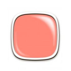 GEL POLISH Seashell 10ml